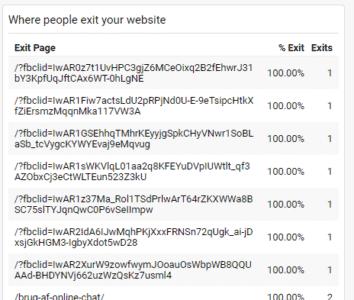 fbclid i en liste fra Google Analytics